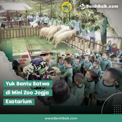 benihbaik_2020-12-22_d979414c64140a17cf4c1a7e6e32ef60b7d9acee_jpeg