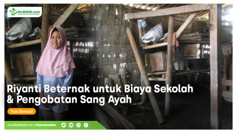 Riyanti Beternak Untuk Biaya Sekolah Dan Pengobatan Sang Ayah