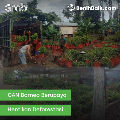 benihbaik_2020-03-02_1583137515_FW_5e5cc2ebd93ad.jpg