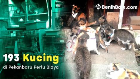 benihbaik_2020-04-2215875371995e9fe52f1d3a1.jpg