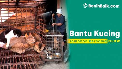 benihbaik_2020-05-2515903981285ecb8cb073395.jpg