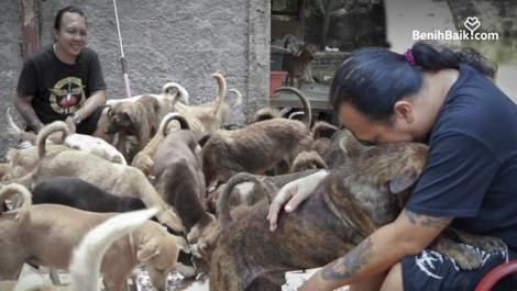 Sang Penolong Hewan yang Butuh Pertolongan